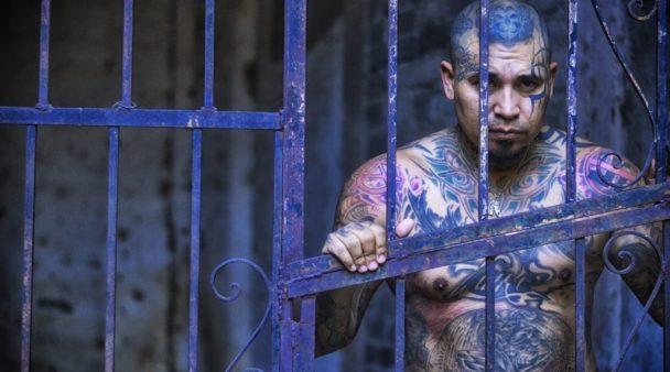 Tatuointiriita